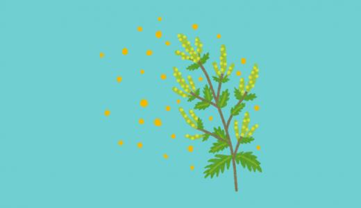ニキビと花粉の関係は?花粉症を治す薬に問題がある?
