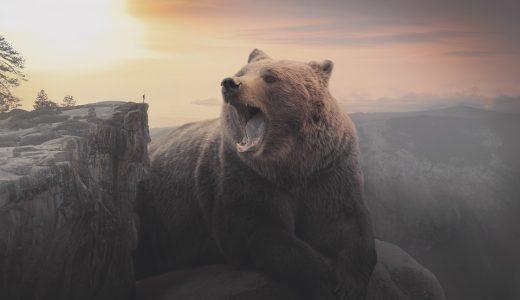 なぜ昔の神は『動物』や『巨人』が多いのか?