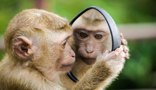 最強アスリート同士が遺伝子を遺し続けると最後には猿になる?