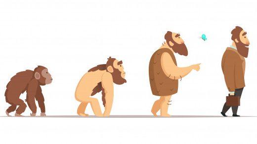 猿人→原人→旧人→新人。長い時間をかけて人類は少しずつ現代人に近い姿に進化していく
