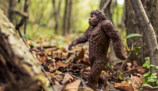最初の人間は本当に猿人?アダムとイブじゃないの?猿とも人とも言えない化石の発見