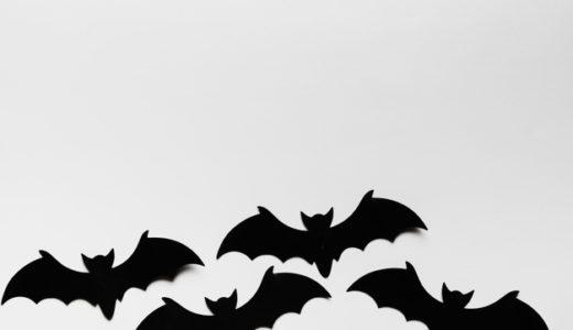 無鳥島の蝙蝠(コウモリ)は誰だ?四国の長宗我部元親、中国の毛利元就、『九州三強』龍造寺隆信、島津義久